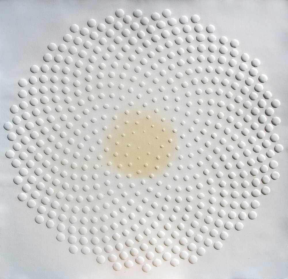 phyllotaxis 2
