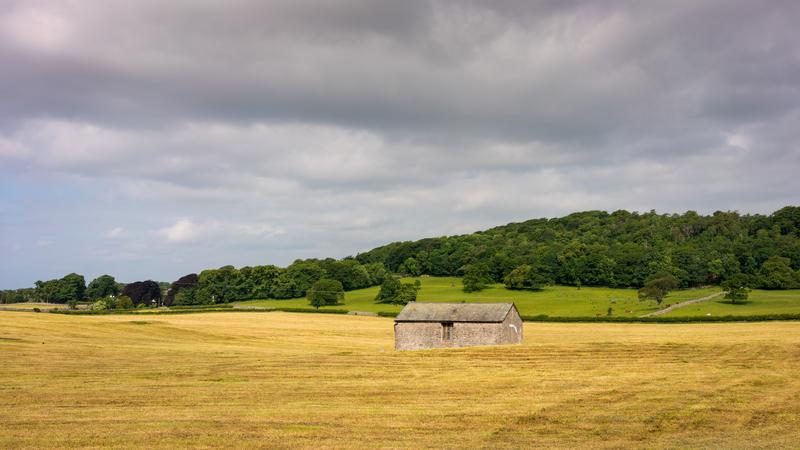 house-and-farm-landscape_800.jpg