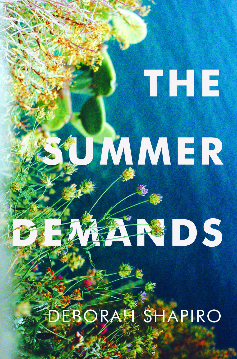 The Summer Demands_cvr_300dpi print res.jpg