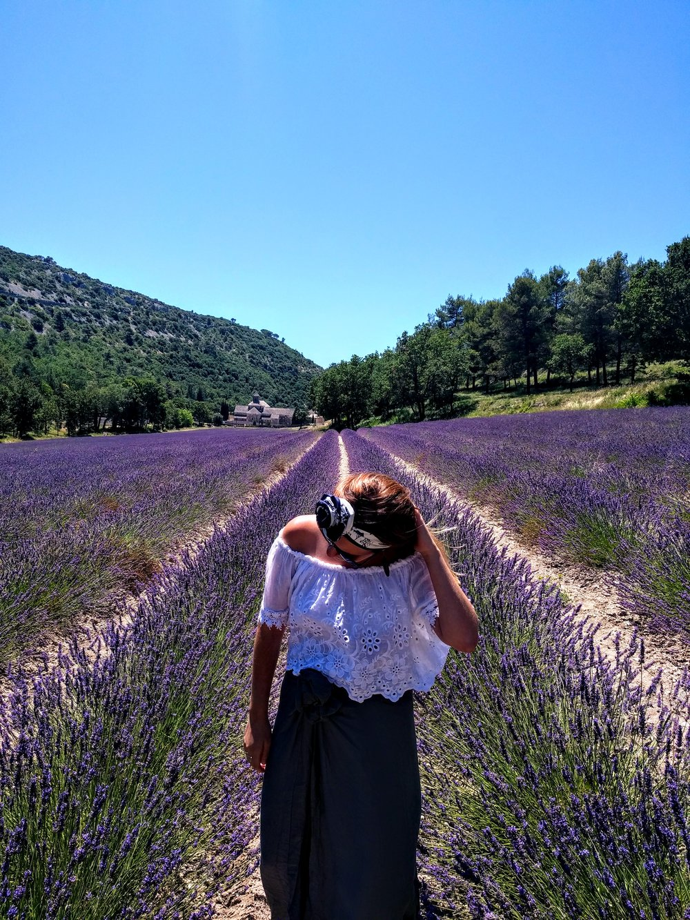 For The Story Vacations | Lavendar Fields
