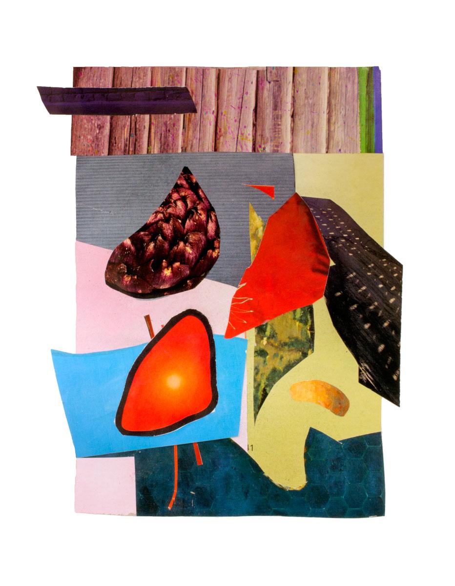 collage7a.jpg