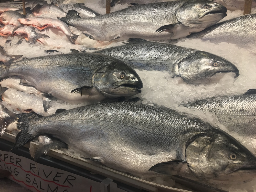 I stopped by Pike Place Market for some fish tossing!!! That was pretty cool. These are the largest salmon I've ever seen.