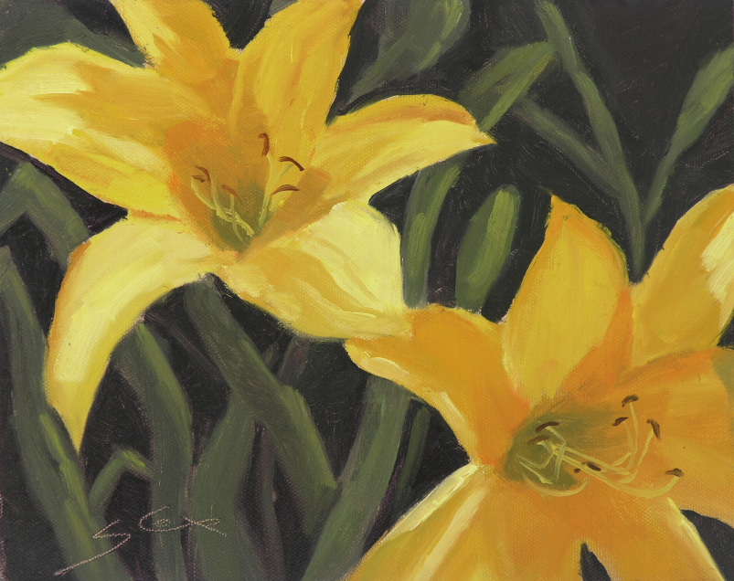 Daylilies Up Close 1.JPG