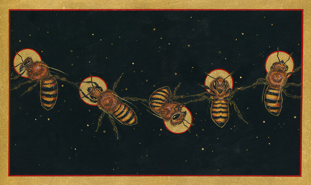"Five Golden Bees  - 11""x17"" Archival Print Signed by Matthew Willey"