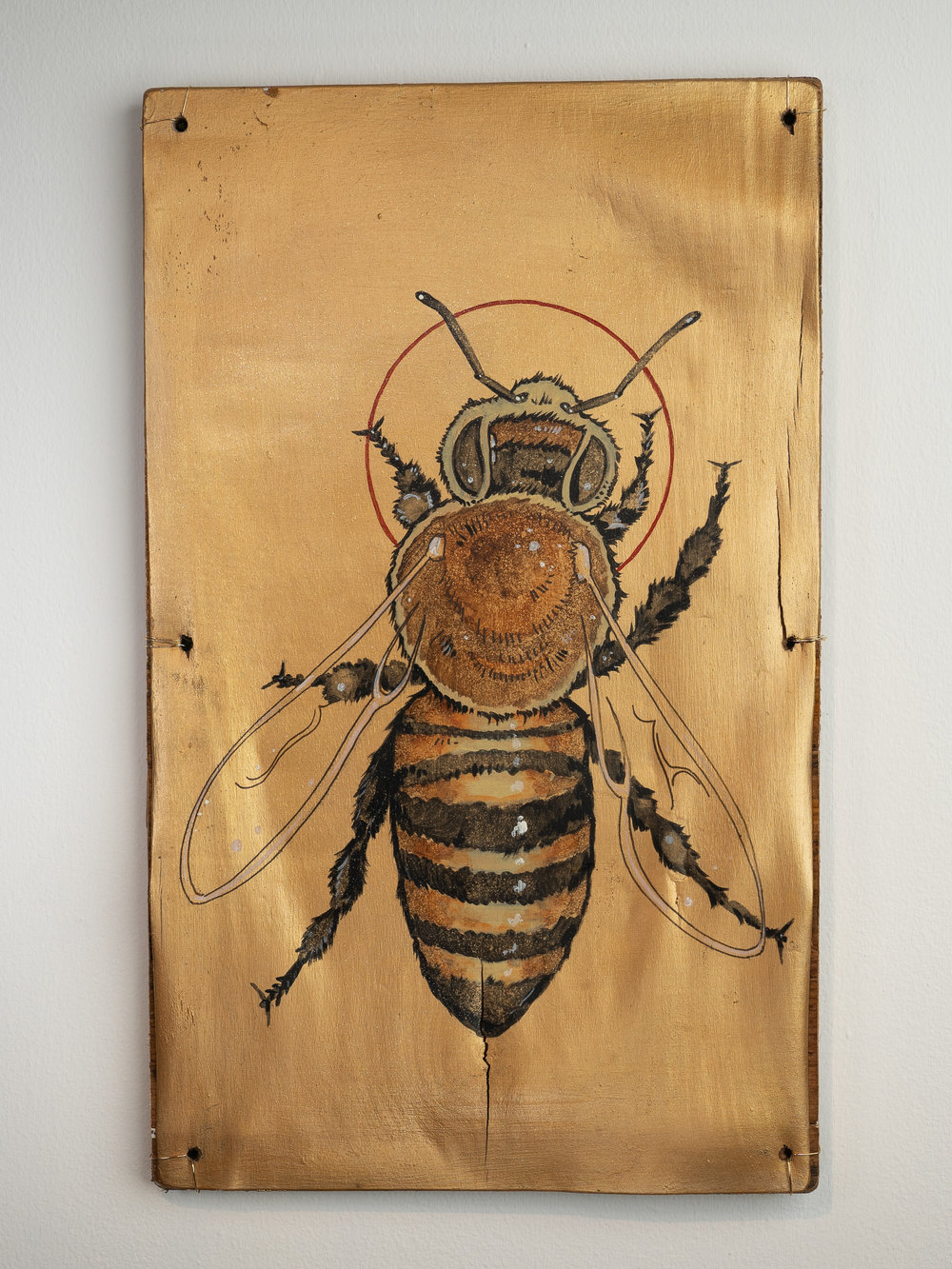 Colony Expanse Bees -