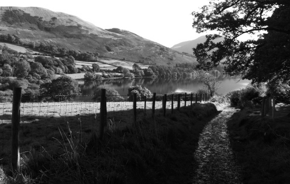 Loweswater 23 copy (1).png