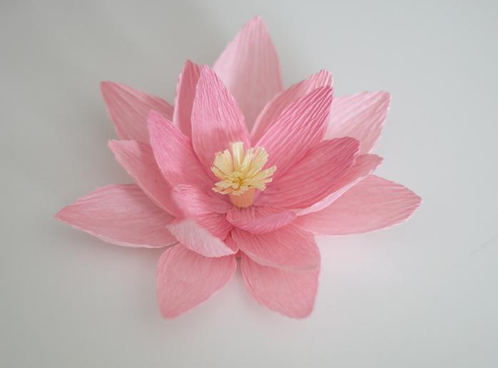Crêpe Paper Water Lilies