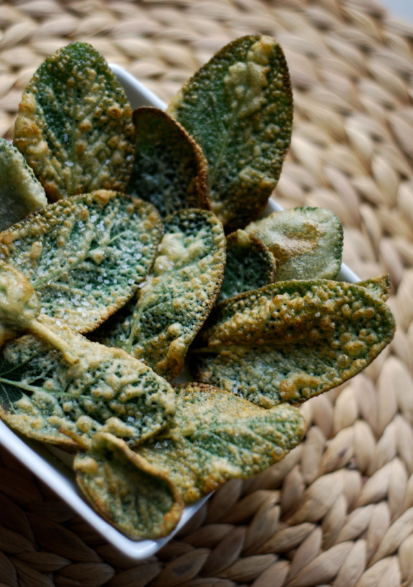 Fried Sage Leaf Appetizer