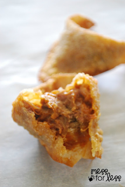 Pulled Pork Stuffed Wonton
