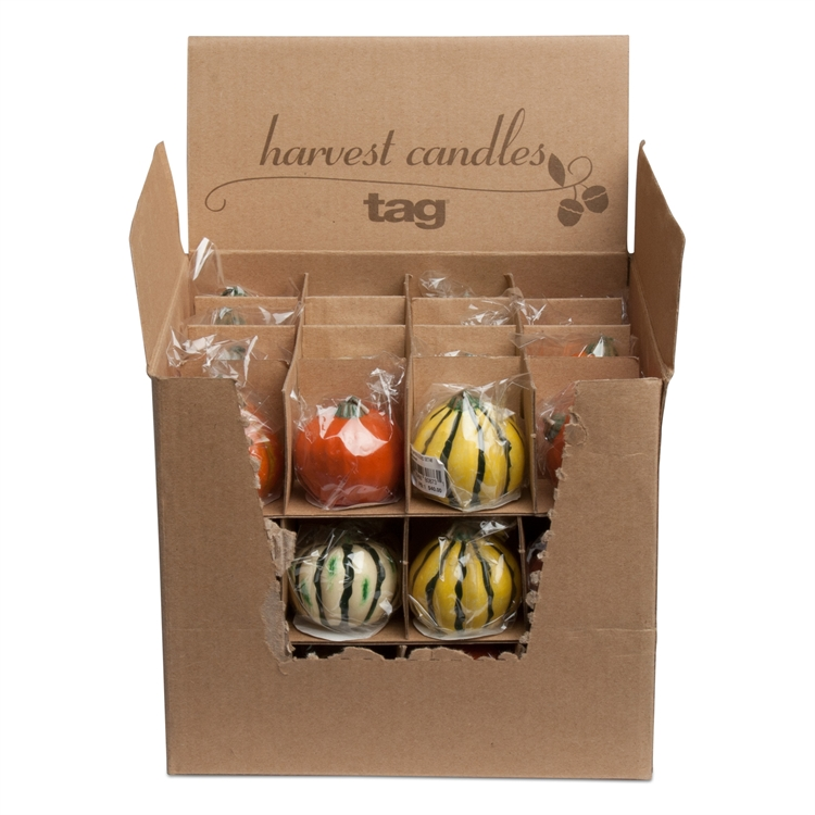 TAG: Mini Pumpkin & Gourd Candles