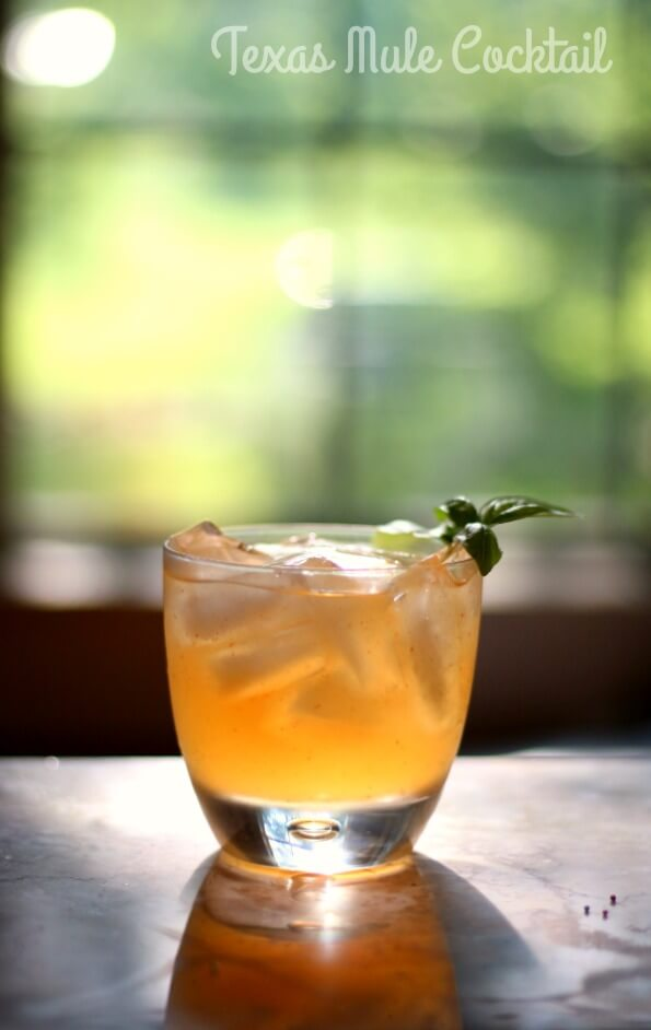TEXAS MULE COCKTAIL