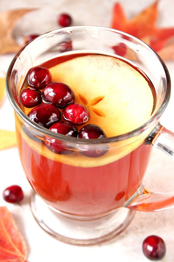 Apple Cranberry Slow Cooker Tea Recipe