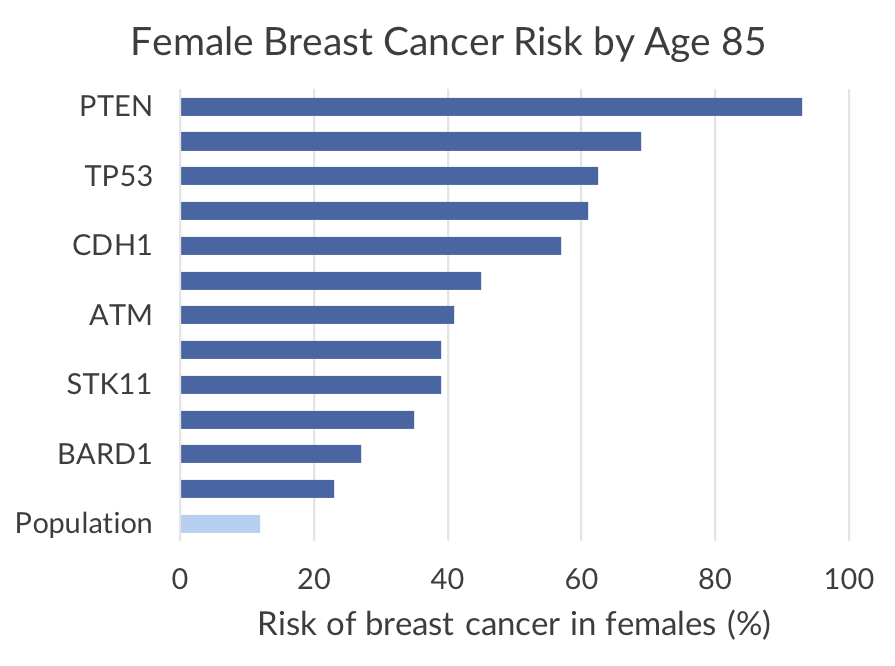 Female breast cancer risk by age 85