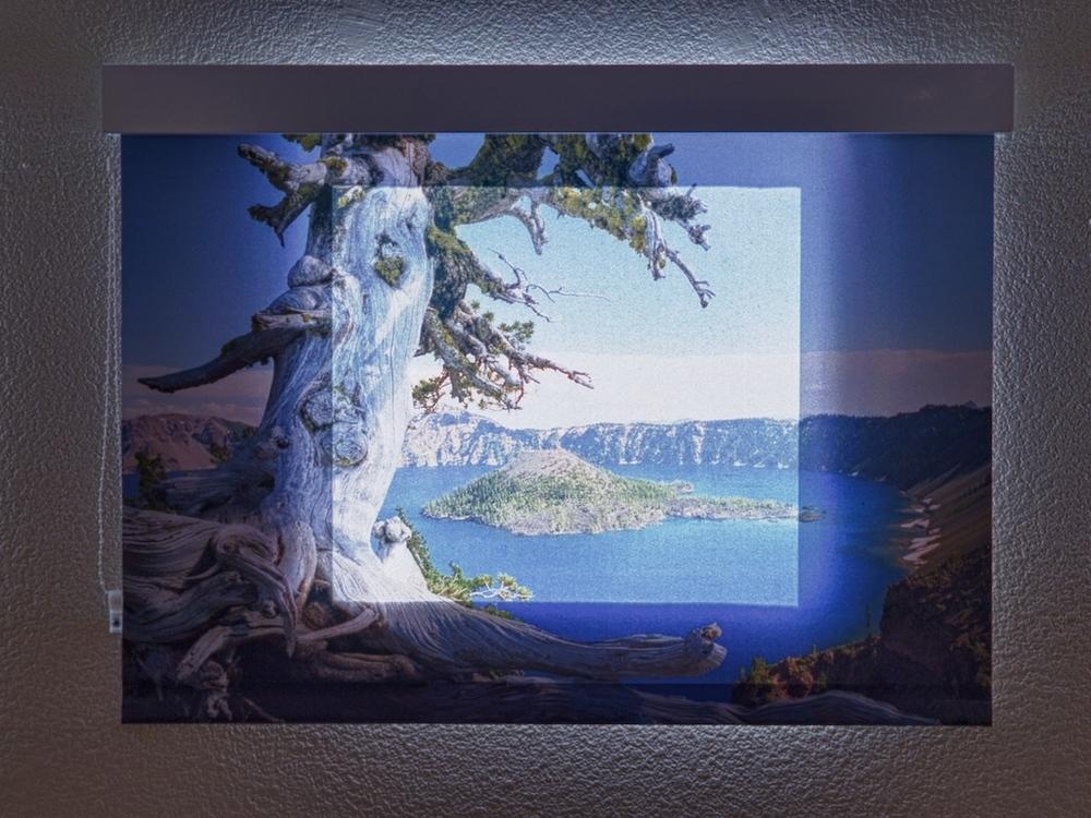 Window Shades 2.jpg
