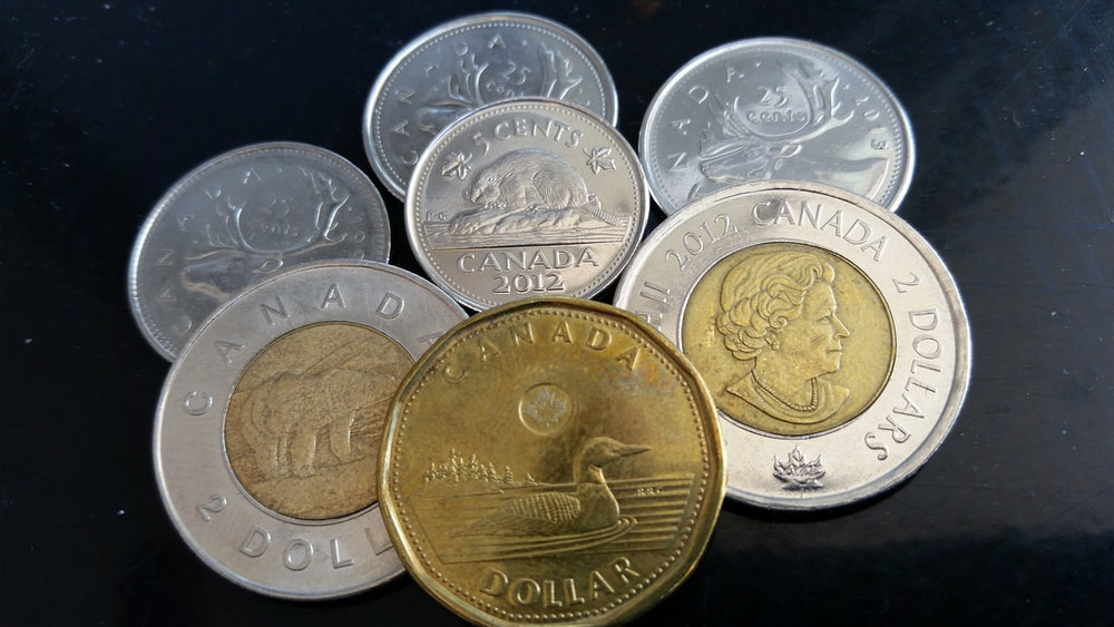Loonie, Toonies, and even some quarters and a nickel. Pocket change is a Canadian zoo.