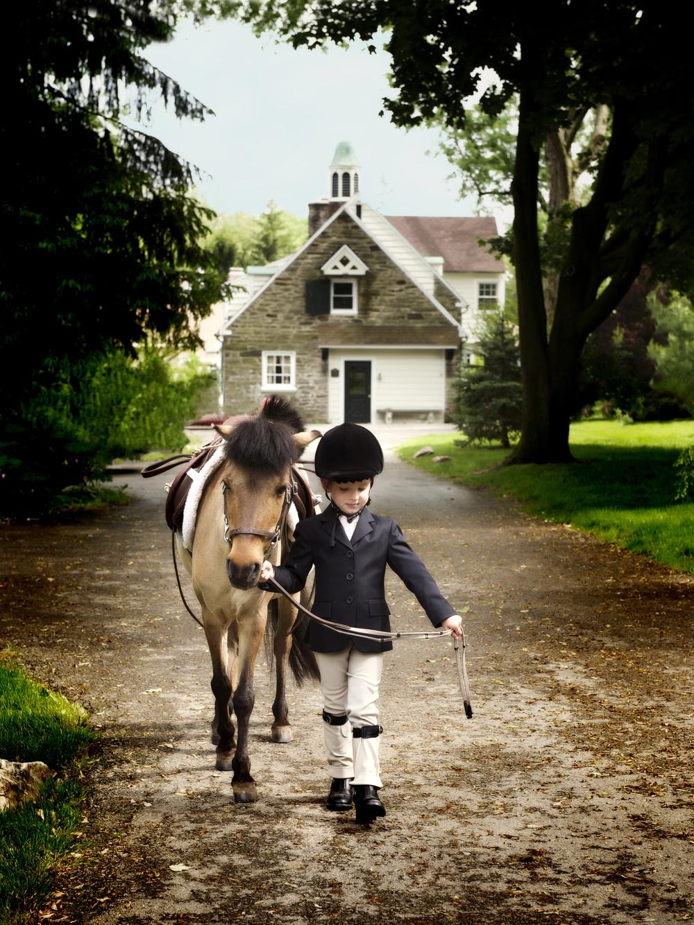 schreder g horse.jpg