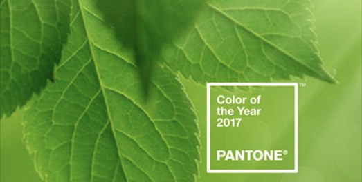 Greenery the color for 2017 #pantone