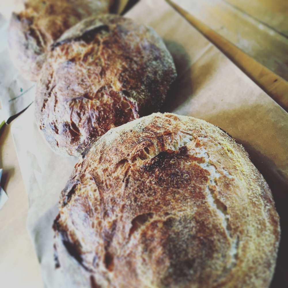 Homemade Rustic loaves
