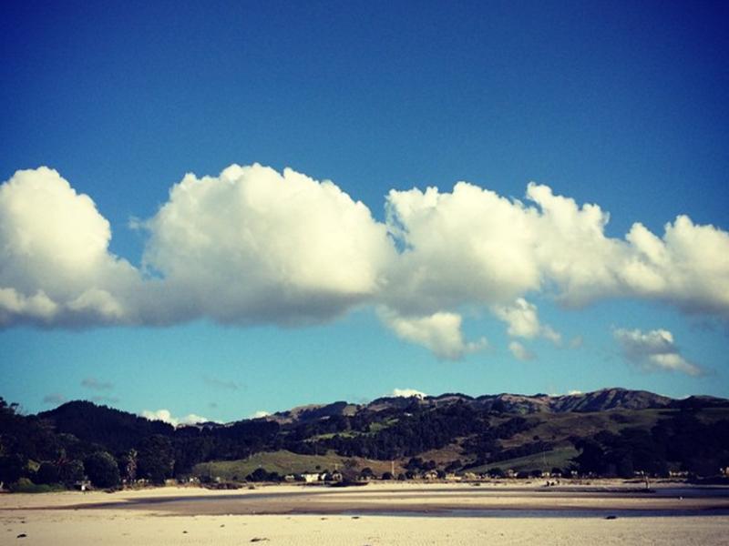 Nice day for walking Skippy on Pakiri Beach in New Zealand.