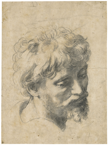 raphael-head-of-a-young-apostle-sold-at-sothebys-london-december-2012.png