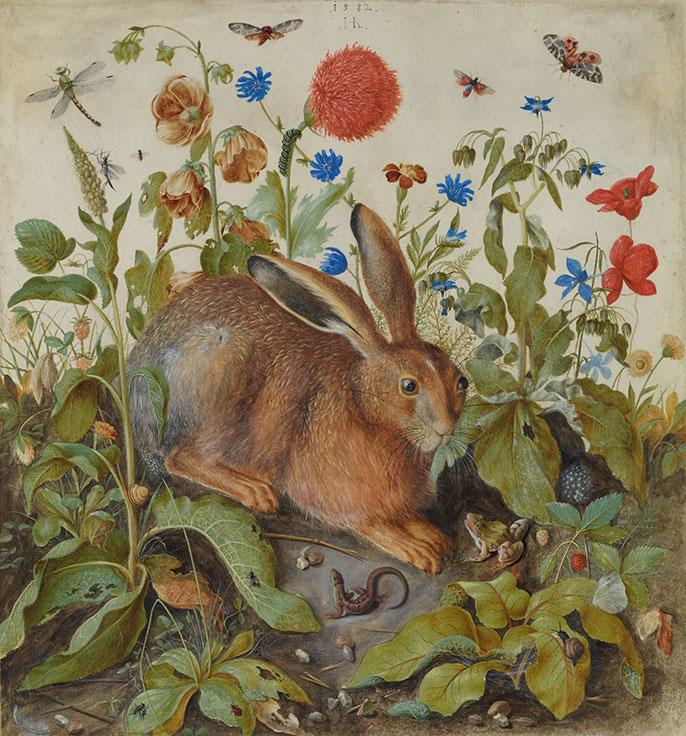 hans-hoffmann-a-hare-among-plants