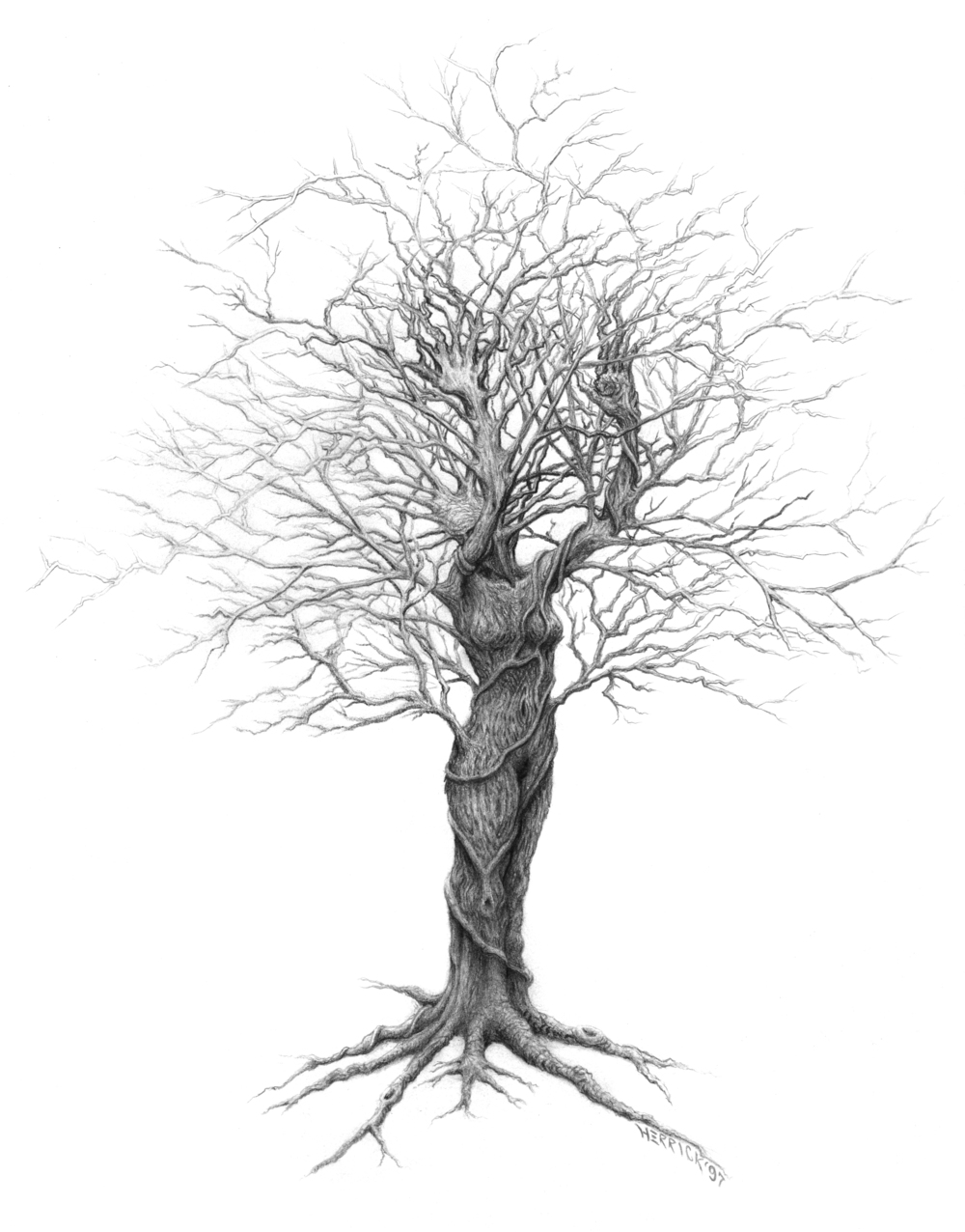'Lady Tree - Winter'
