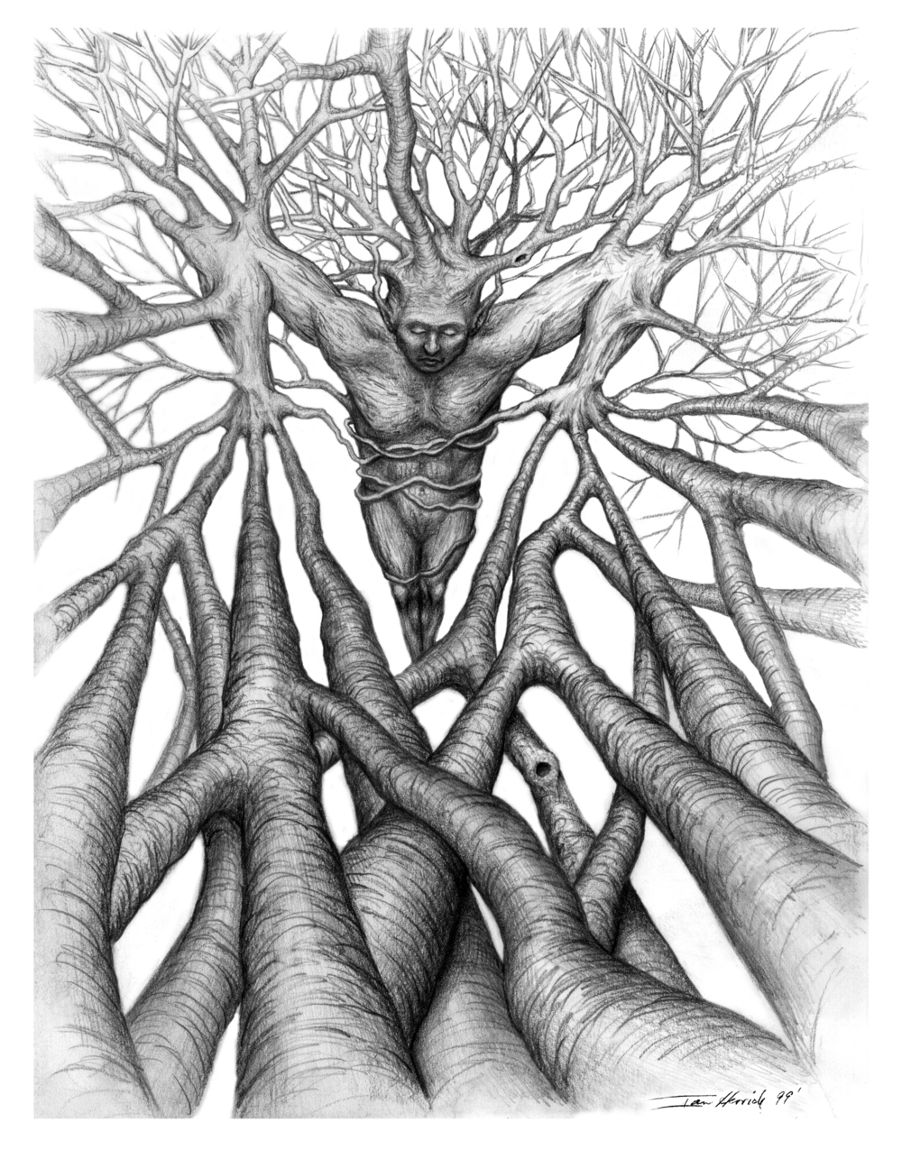 'Branching Out'