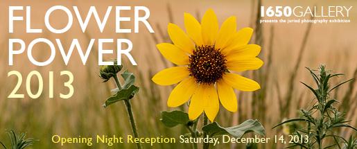 1650_banner_131214_flowerpower_show