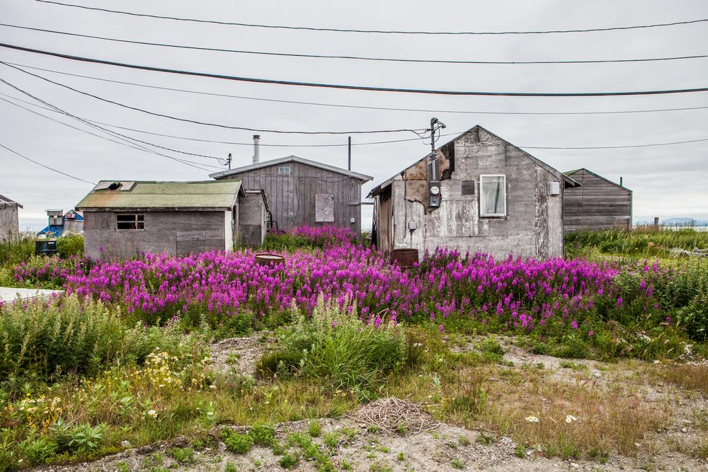 Postmodern Arctic Village-1.jpg