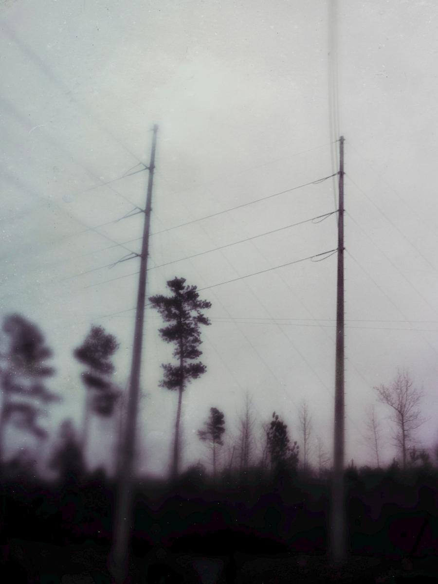 bloodland-11.jpg