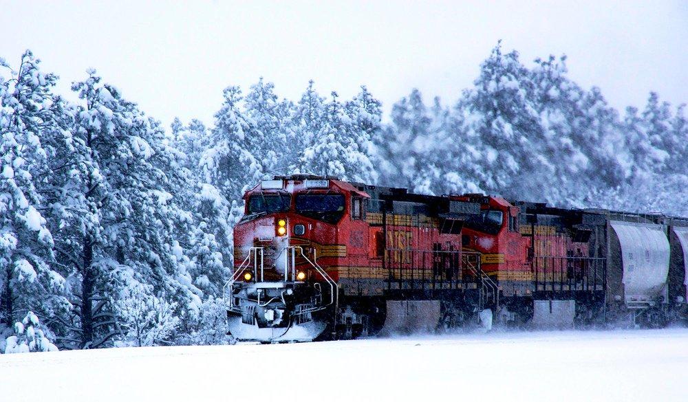 BSNF Train Resized.jpg