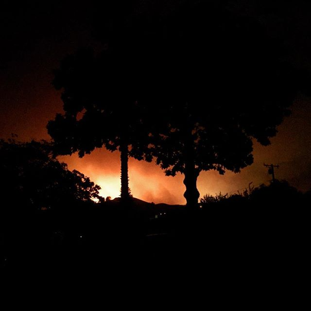 The view from my (Todd's) backyard on Monday night around 11:30 pm. Those flames are about 1000 feet from my house. That said as far as we know the fire was heading westward, and we may indeed still have a Home. Most importantly when we evacuated, I was able to get my wife, my mother and my young son out plus our two cats, with minimal else. #igotthebasses and I saved the #darkglass @darkglasselectronics microtubes 900 head... because it's small, and because darkgkass. Had to leave the @barefacedaudio 1x12. Seriously though, I have some friends whose homes are gone. Sending out major amounts of love and hope to everyone in ventura and beyond.