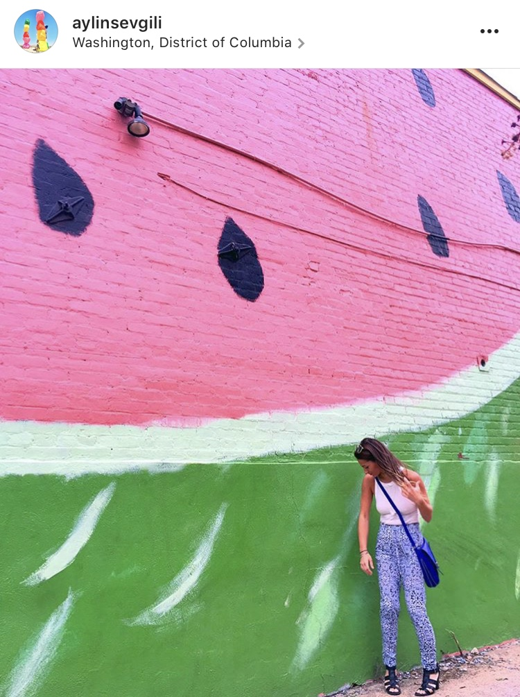 most instagram worthy places in washington dc sev cities the watermelon house