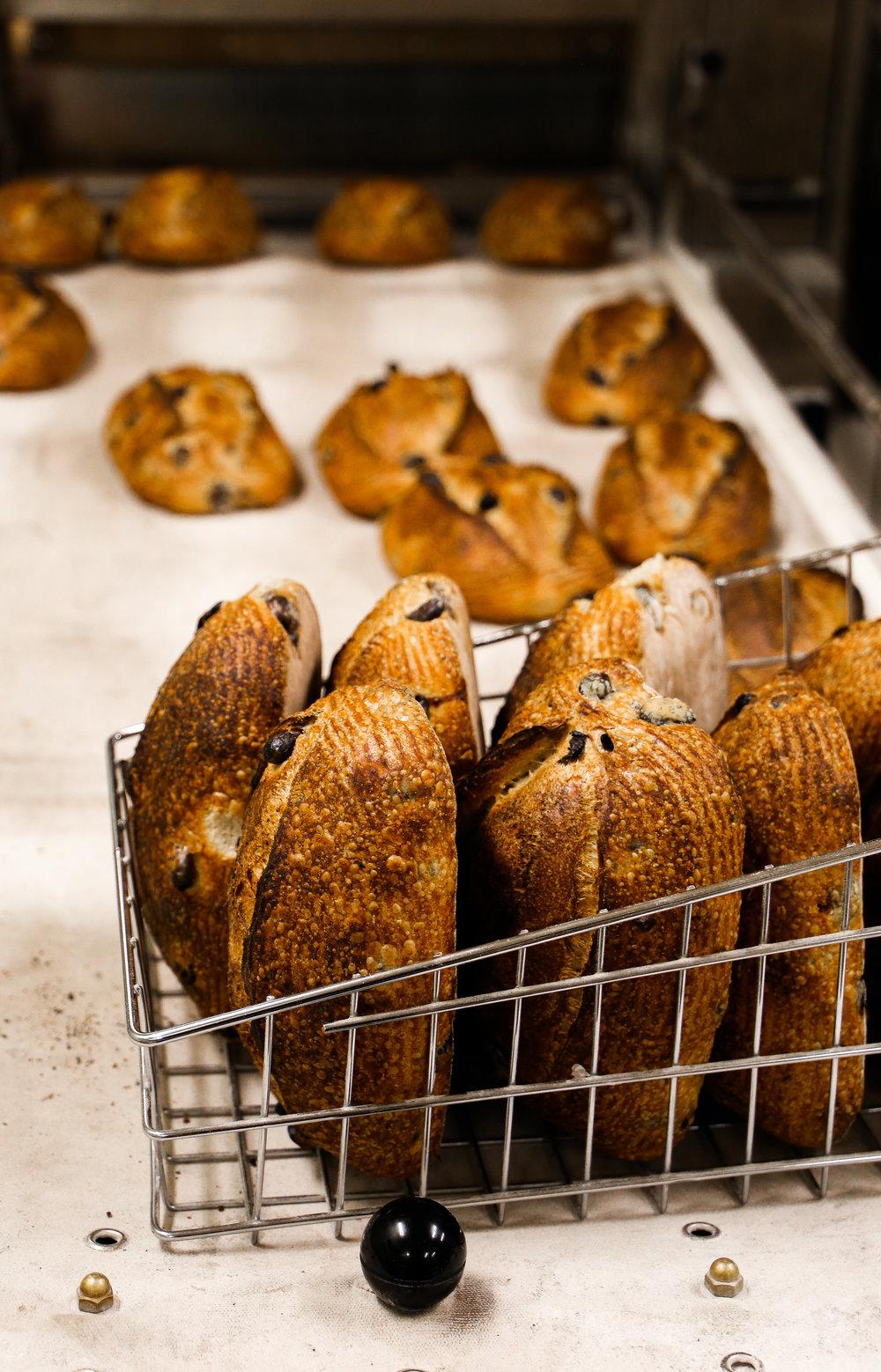 Rasin Walnut Loaves