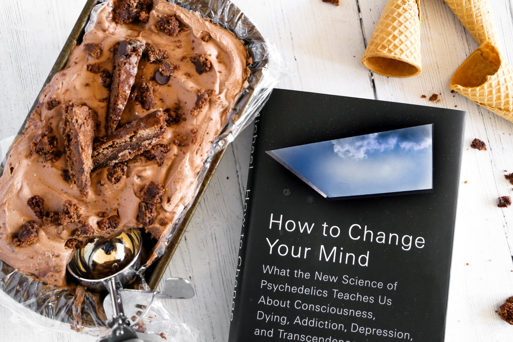 Double Fudge Brownie Ice Cream and How to Change Your Mind