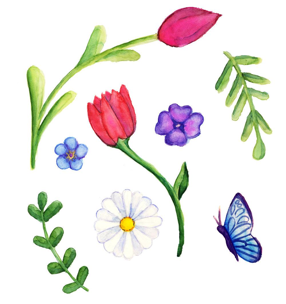 spring2_web.jpg