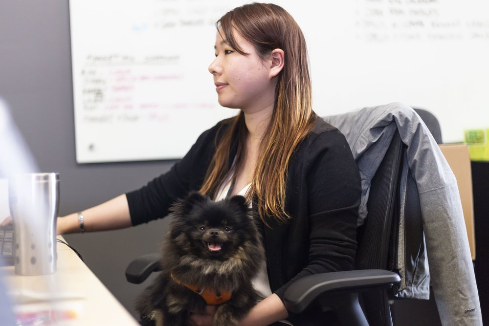 Dog owners love our office's four-legged friendliness.