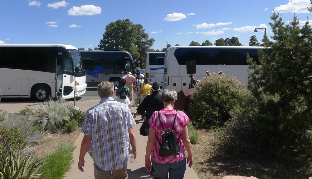 shuttle-buses2.jpg