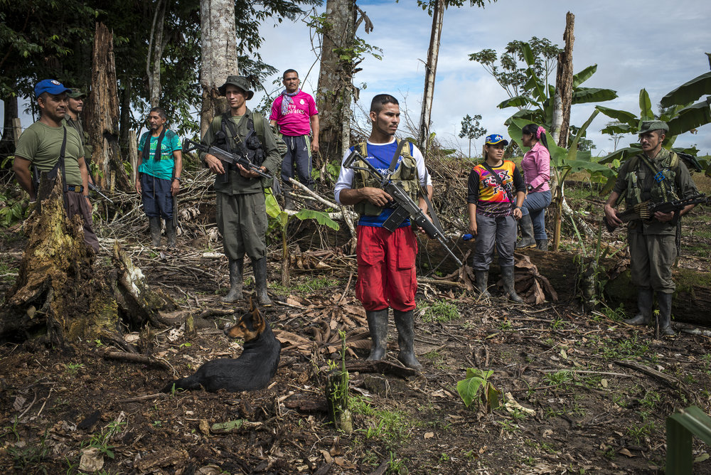 June 2016, South Caqueta. Photographed here are a group of guerrilleros just before starting their agricultural activities on farm where they have planted innocuous crops such as sugar cane, pineapple and cassava. Once integrated to the civilian life every fighter could follow a singular way, and the community they know living into the guerrilla could disappear.