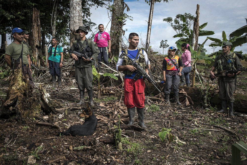 A group of guerrilleros is posing before beginning their agricultural activities in a farm where the guerrilla planted sugar cane, pineapple and cassava. June 25, 2016, South Caquetá)