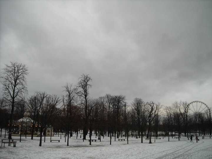 The Jardin de Tuileries. Watch your step: shiny patches of snow are slippery. Slush is good.