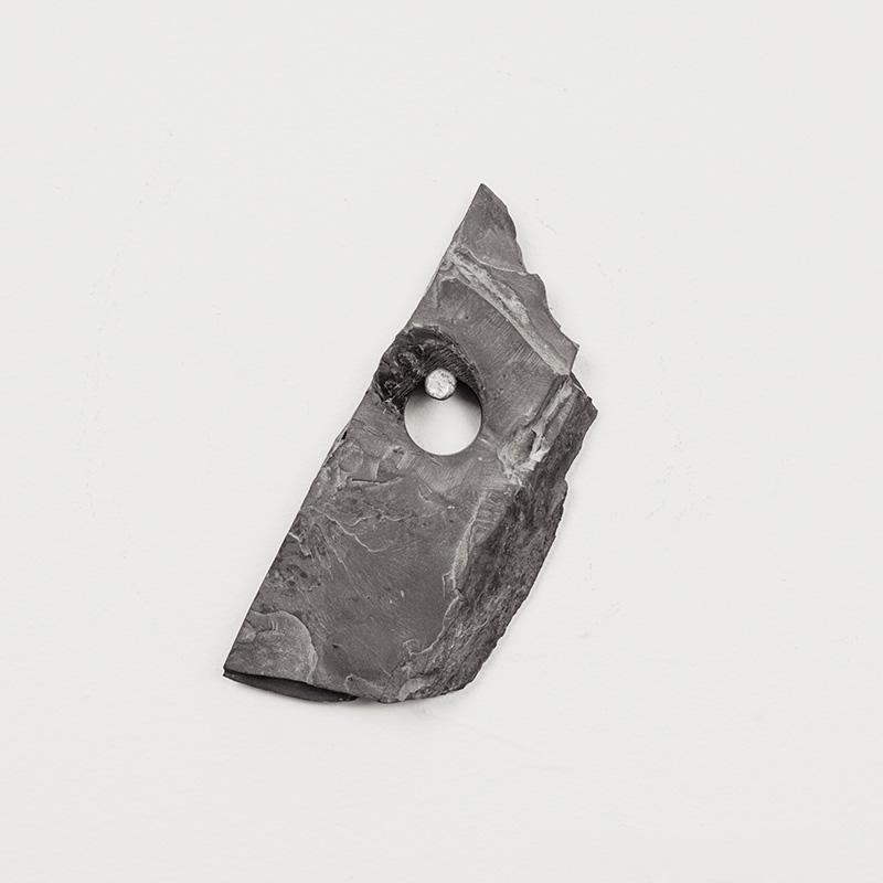 Fossils04.jpg