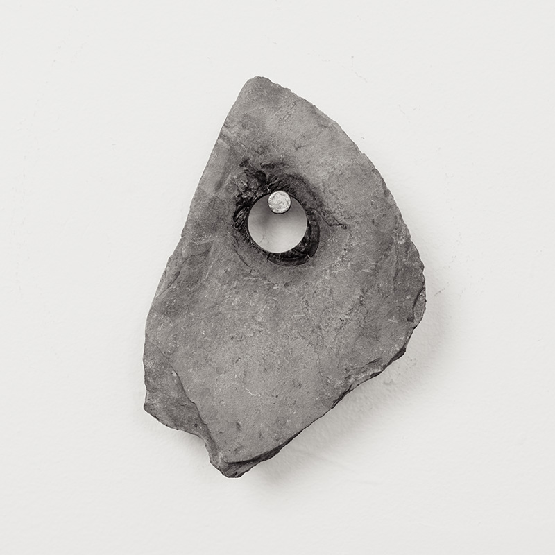 Fossils15.jpg
