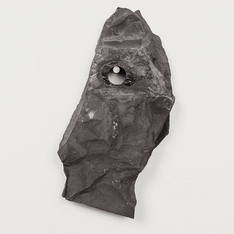 Fossils19.jpg