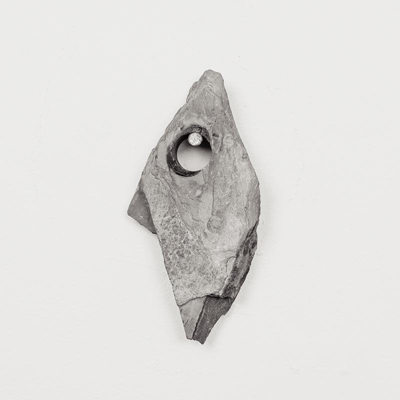Fossils05.jpg