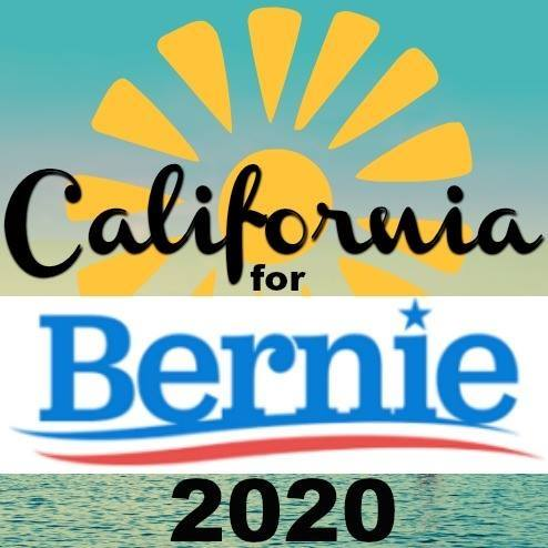 "Having been an elected Bernie Sanders delegate in 2016, I've been endorsed by a number of online groups aimed at continuing the ""political revolution,"" including  California for Bernie 2020  and  Elect Bernie Thinkers"