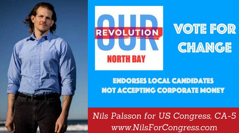 Nils Palsson for US Congress.png