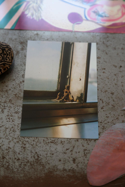 Elizabeth Englander + Josefine Seifert, Postcard 2 (crabwalk), 2017