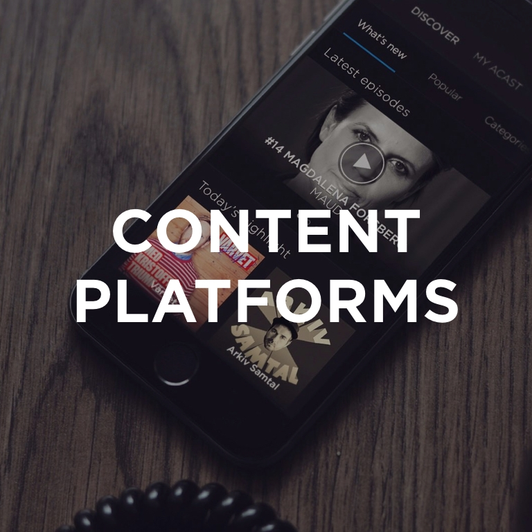 Services that aggregate and distribute content, helping creators to monetize and consumers to find relevant content.