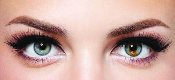 Love Those Lashes - Billion Dollar Brows treatment